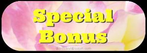 bonus button2